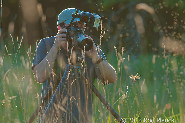 Particpant Photographing Dragonfly, Summer Safaris, Michigan