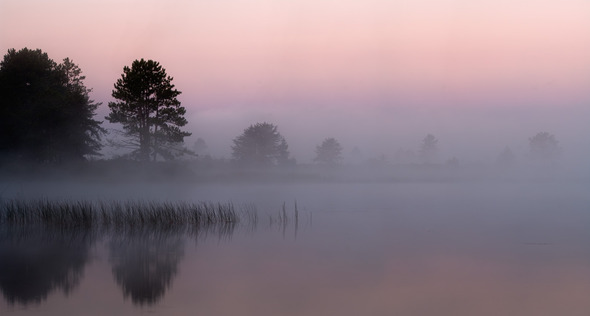 Foggy Sunrise, Seney National Wildlife Refuge, MI